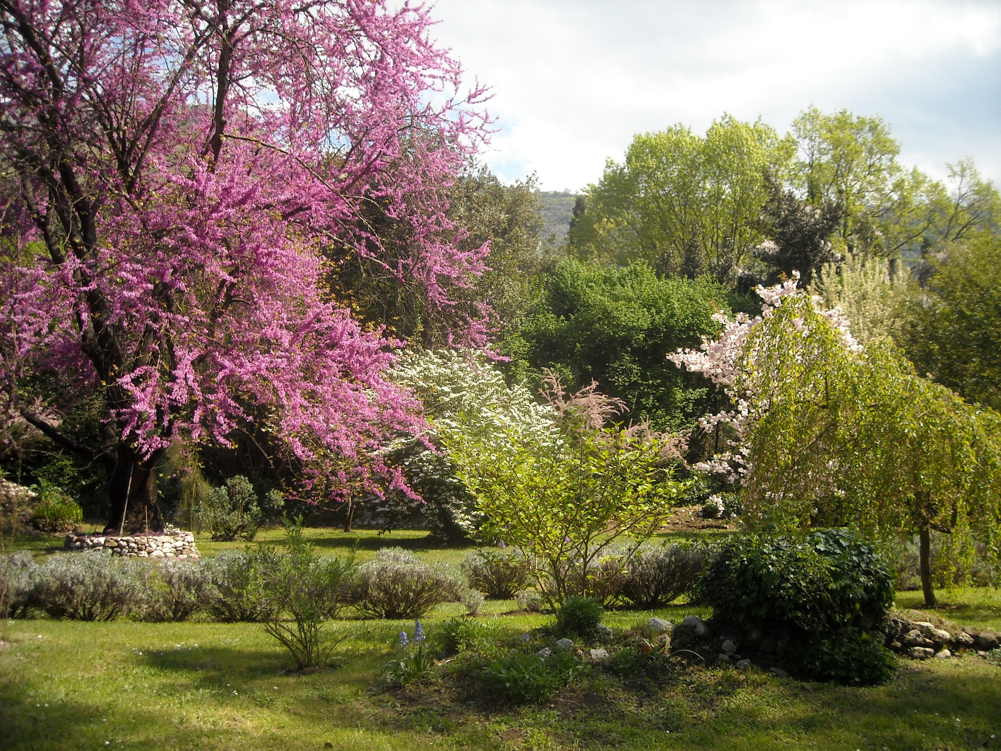 I giardini di ninfa e sermoneta associazione la castellina for Mangiare vicino al giardino di ninfa