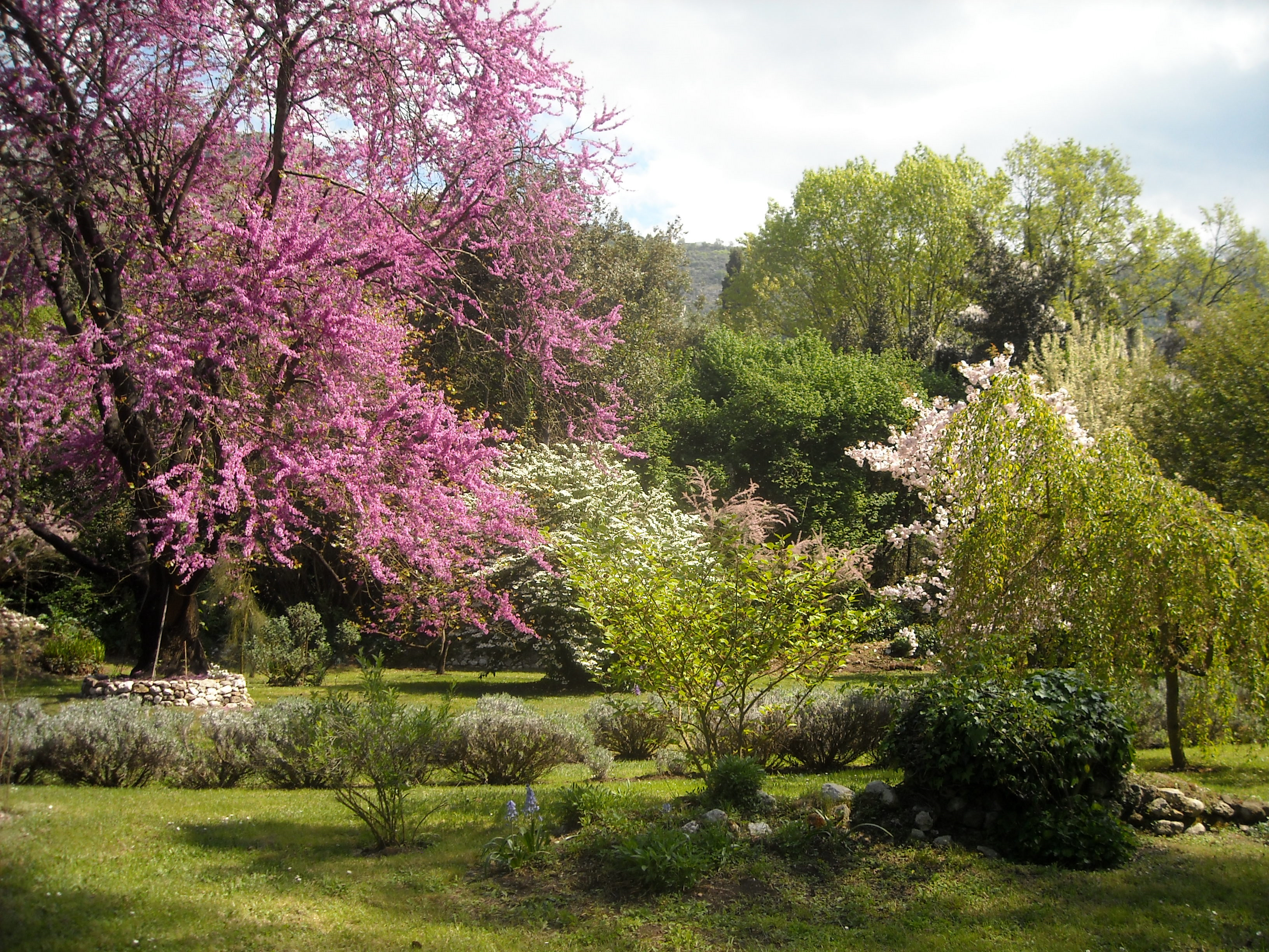 I giardini di ninfa e sermoneta associazione la castellina - I giardini di ninfa ...